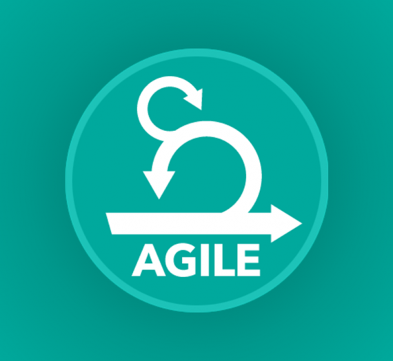 Does Agile work in BPM projects?